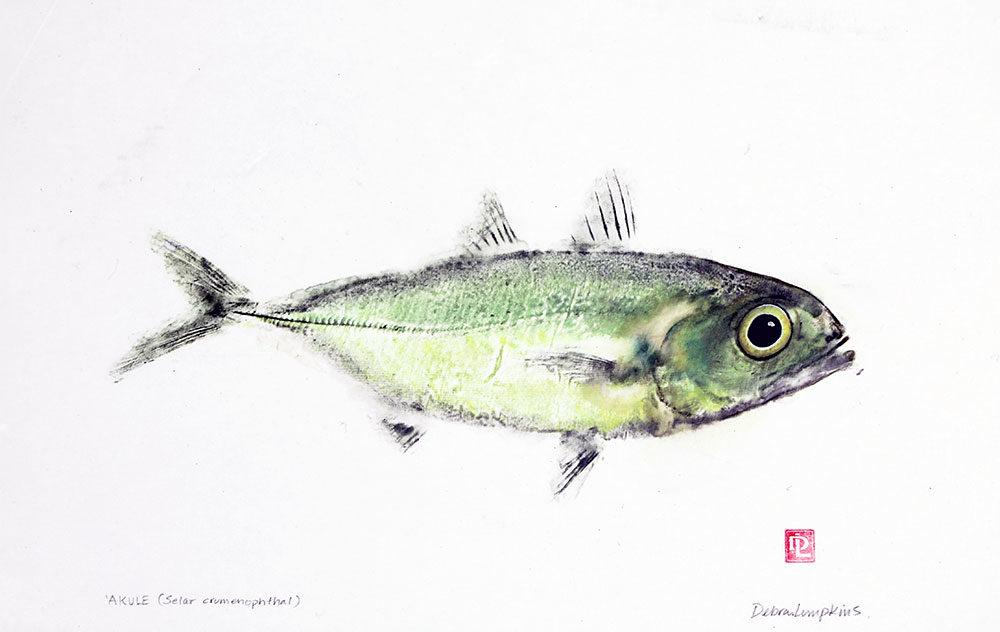 16104 Akule fish gyotaku