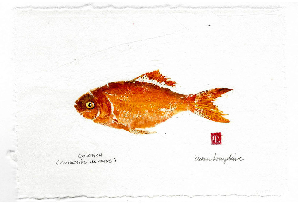 project goldfish